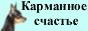 """питомник """"Карманное счастье"""" русский той-терьер"""